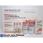 TEST CYP - T - Cypbolin 250